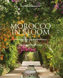 Morocco in Bloom