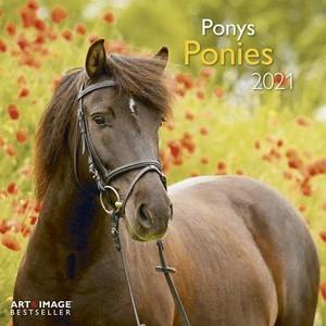 Ponies - Pony's Kalender 2021