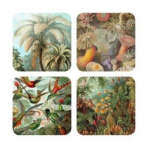 Set Onderzetters Haeckel Natuurafbeeldingen - Cubic
