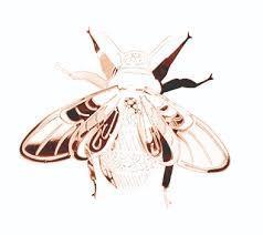 Bumble Bee / Hommel Tafel decoratie Pluto
