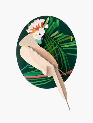 Exotic Bird - Cool Cockatoo Studio Roof