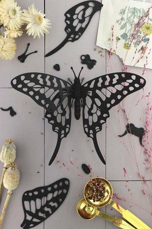 Swordtail Vlinder Zwart Assembli