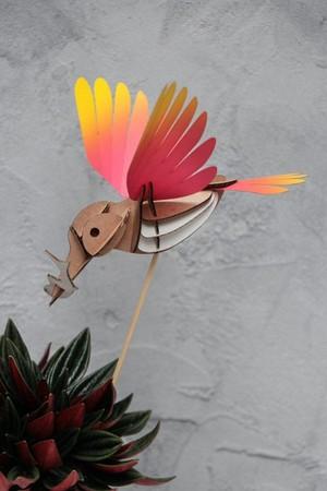 IJsvogel Magenta - Geel Assembli