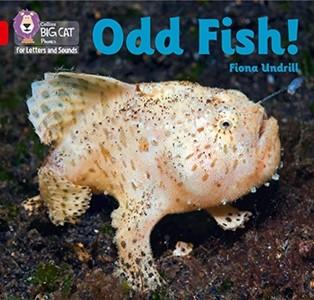 Odd Fish!