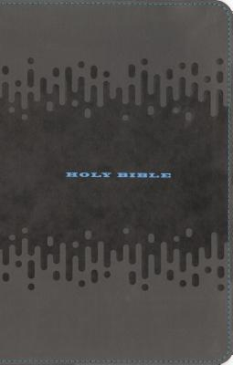 Kjv, Bible For Kids, Leathersoft, Charcoal