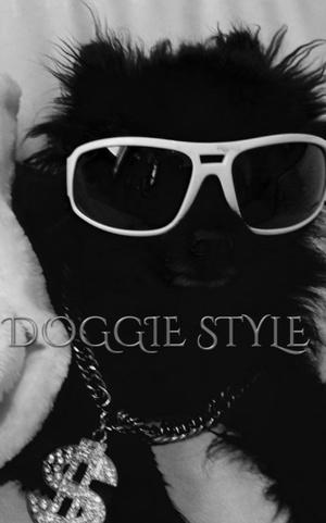 Doogie Style Black Pomeranian Journal