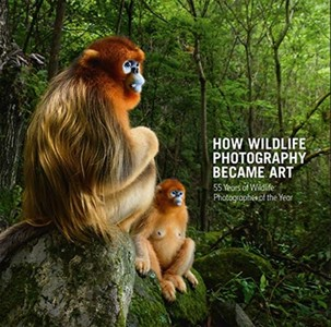 How Wildlife Photography Became Art