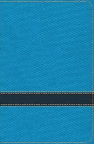 Kjv Study Bible For Boys Ocean/navy Leathertouch