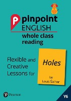 Pinpoint English Whole Class Reading Y6: Holes