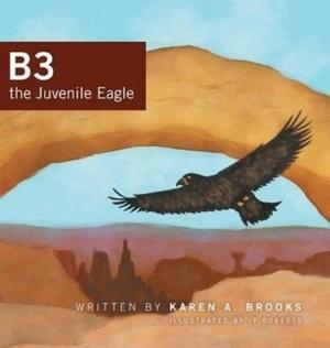 B3 The Juvenile Eagle