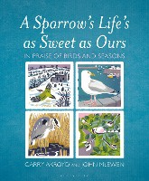 Sparrow's Life's As Sweet As Ours