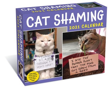 Cat Shaming Day-to-day Boxed Kalender 2021