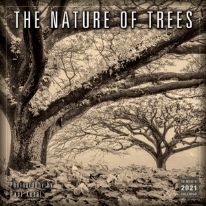 Nature Of Trees 2021 Calendar