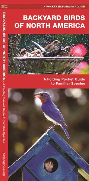 Backyard Birds Of North America