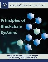 Principles of Blockchain Systems