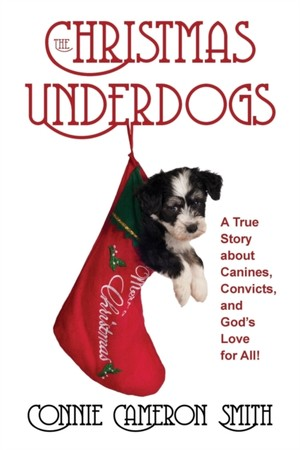 The Christmas Underdogs