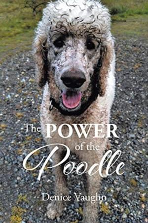 The Power Of The Poodle
