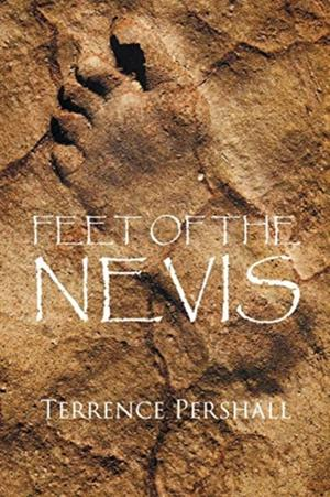 Feet Of The Nevis