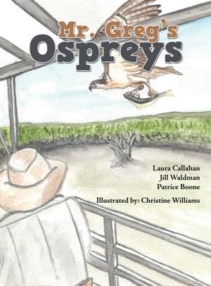 Mr. Greg's Ospreys
