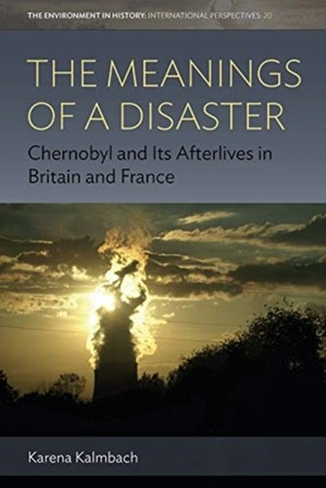 The Meanings Of A Disaster