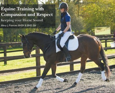 Equine Training With Compassion And Respect