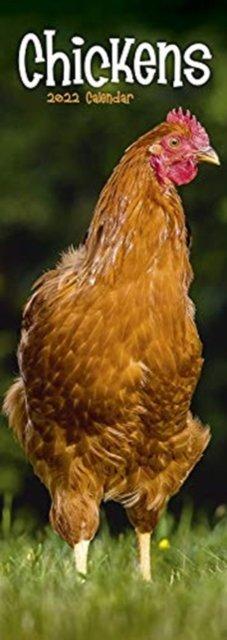 Chickens 2022 Slim Calendar