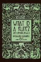 What Is A Rune? And Other Essays