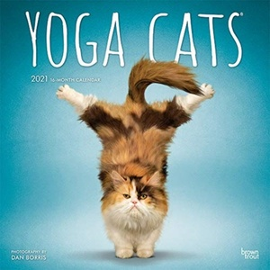 Yoga Cats Kalender 2021