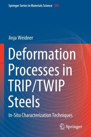 Deformation Processes in TRIP/TWIP Steels