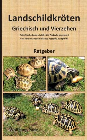 Landschildkröten Griechisch und Vierzehen