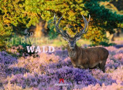 Tierwelt Wald - Dierenwereld Bos - Animalworld Forest kalender 2021