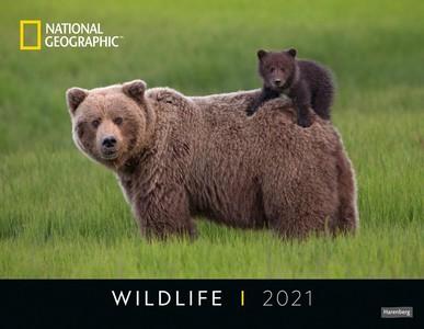 Wildlife Posterkalender National Geographic Kalender 2021