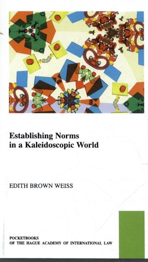 Establishing Norms in a Kaleidoscopic World