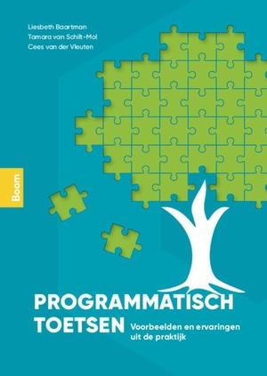Programmatisch toetsen in de praktijk