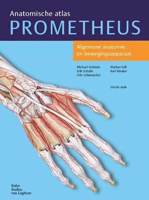 Algemene anatomie en bewegingsapparaat