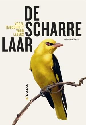 Vogeltijdschrift voor lezers 2020/1