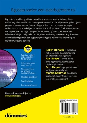 Big data voor Dummies