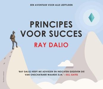Principes voor succes
