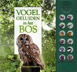 Vogelgeluiden in het bos