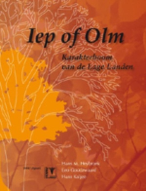 Iep of olm