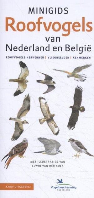Minigids Roofvogels van Nederland en België