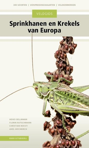 Veldgids Sprinkhanen en krekels van Europa