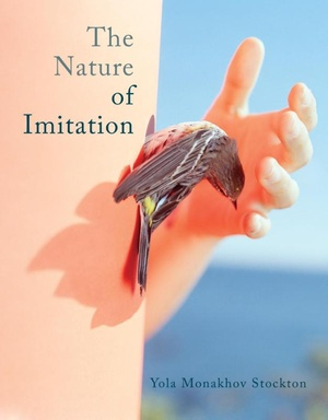 The nature of imitation