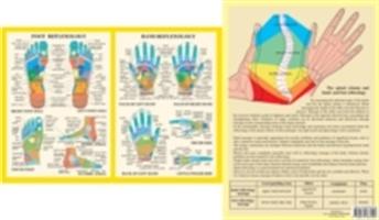 Hand & Foot Reflexology -- A4