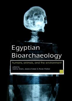 Egyptian bioarchaeology