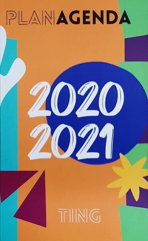 TING planagenda 2020/2021