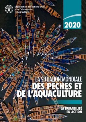 La Situation Mondiale Des Peches Et De L'aquaculture 2020