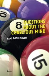 8 Questions about the conscious mind