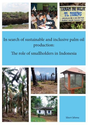 In search of sustainable and inclusive palm oil production