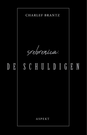 Srebrenica: De Schuldigen